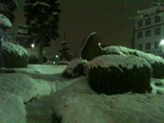 雪降ったわ_c0174484_22162727.jpg
