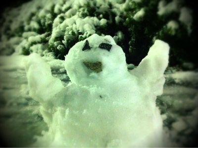 哀行特製雪だるま!!_d0155385_120247.jpg