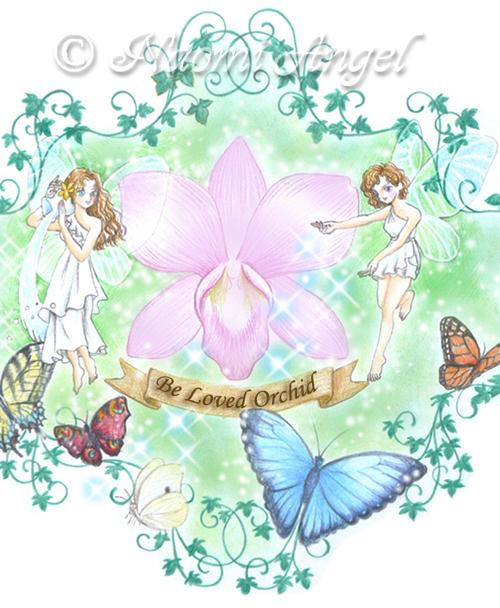 デンファレの妖精たちと神の遣いの蝶たち_f0186787_20404192.jpg