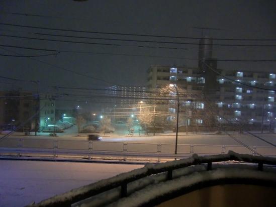 突然の大雪!_e0119092_9252191.jpg