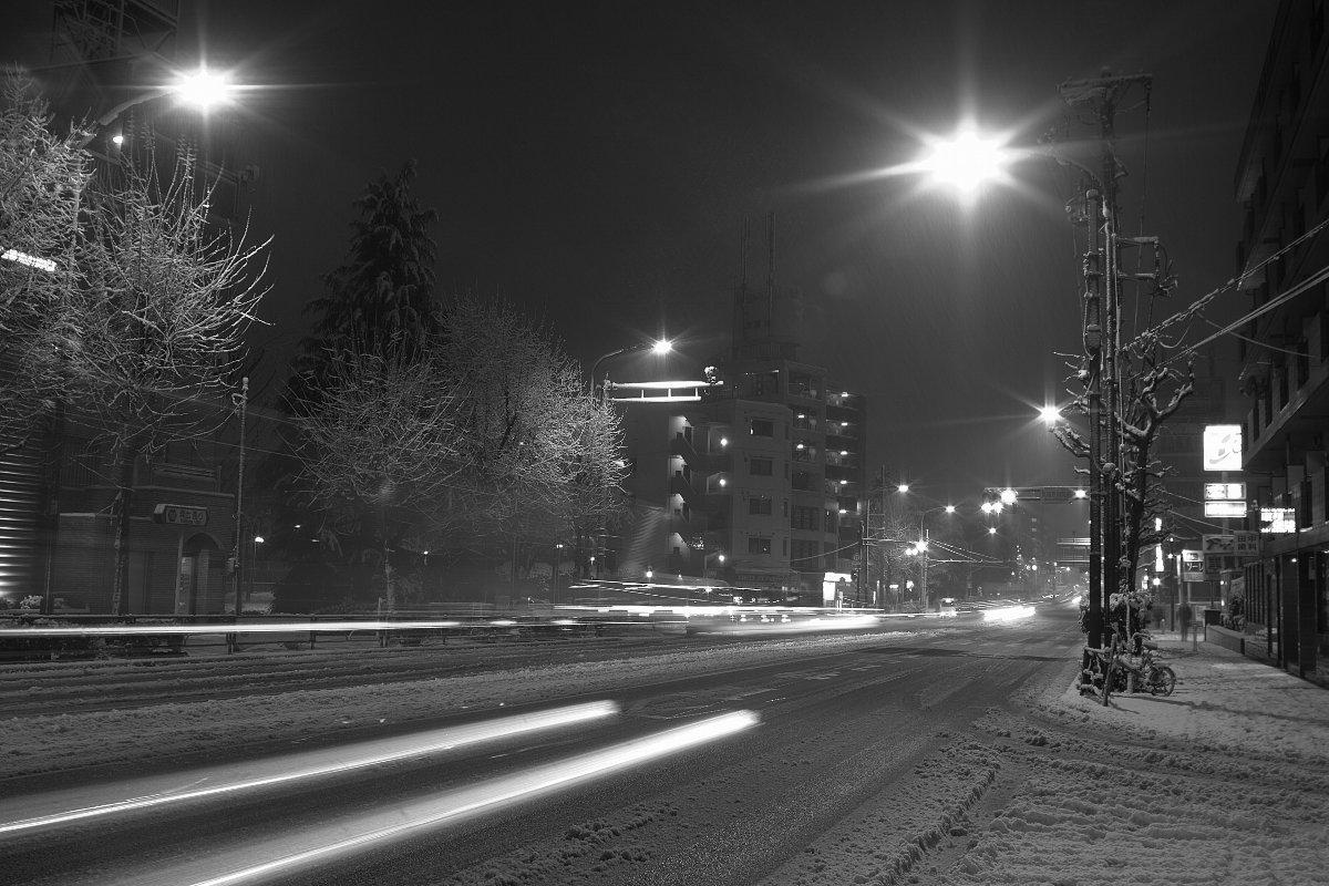 東京は雪なのだ_c0124795_052715.jpg