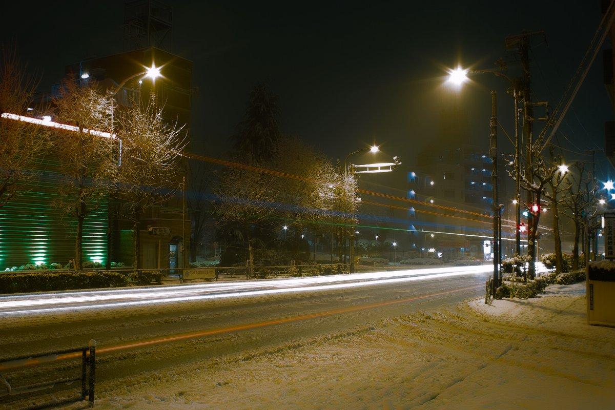 東京は雪なのだ_c0124795_054280.jpg