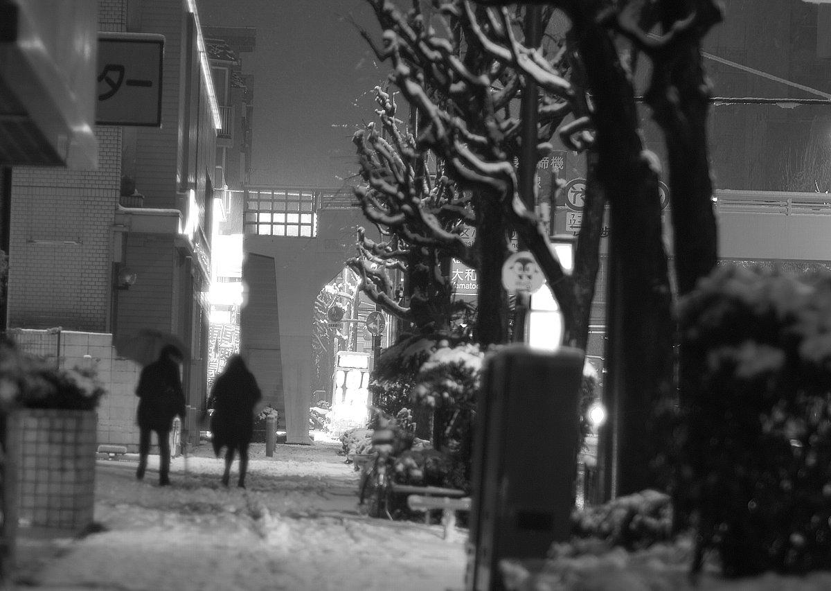 続く、東京は雪・・・深夜_c0124795_125222.jpg