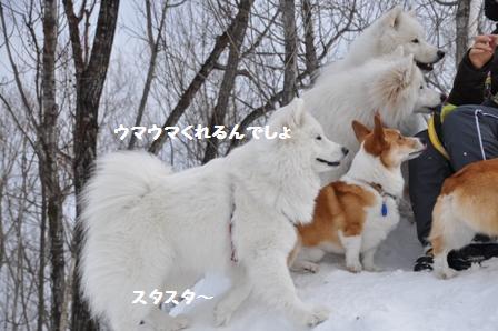 f0212597_8441180.jpg