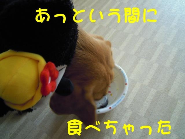 c0166622_21545626.jpg