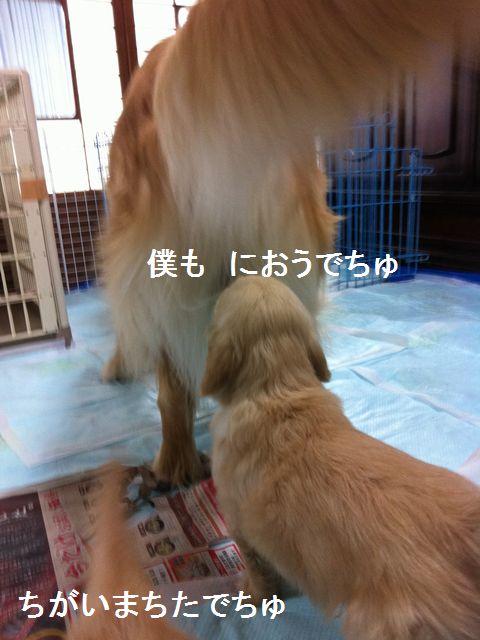 b0127531_056208.jpg
