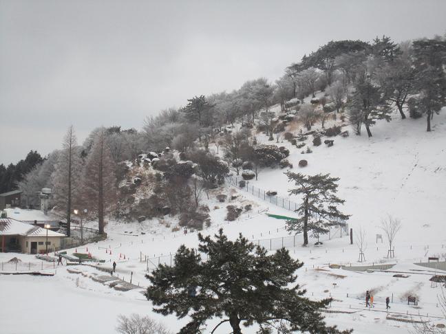 氷の祭典 六甲山_b0177436_2339154.jpg