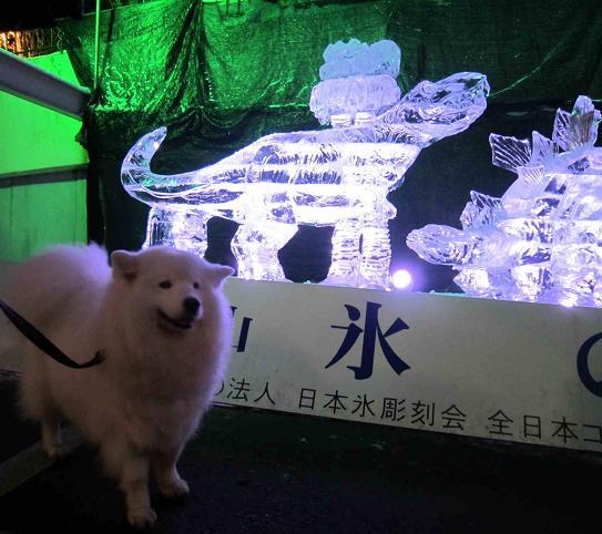 氷の祭典 六甲山_b0177436_23413795.jpg