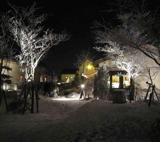 氷の祭典 六甲山_b0177436_2350313.jpg