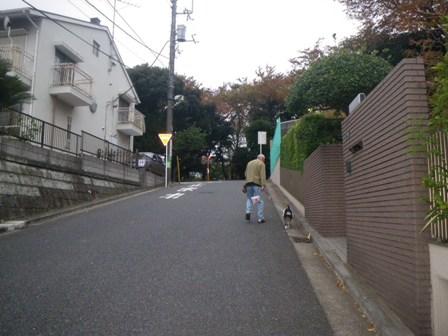 2010 Satogaeri Japan memorys~_a0138438_0514644.jpg
