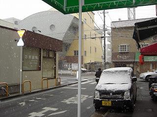 大雪ですよ!_a0137049_1255157.jpg
