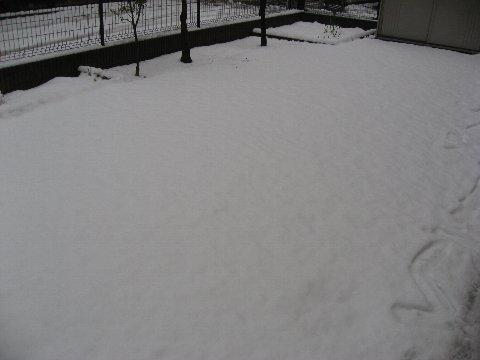 f0088864_11215638.jpg