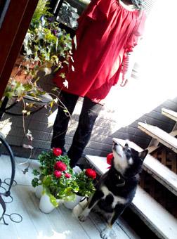 春を感じて~_e0236072_22754.jpg