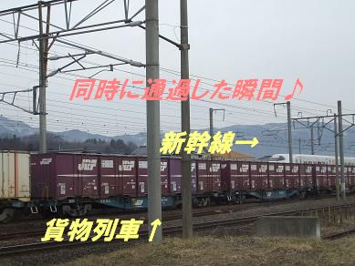 f0179203_19563025.jpg