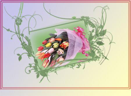 c0068639_23512065.jpg