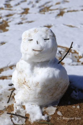 雪の翌日_a0086851_3233464.jpg