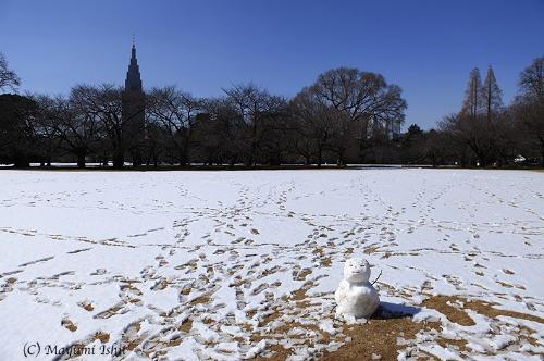 雪の翌日_a0086851_333147.jpg