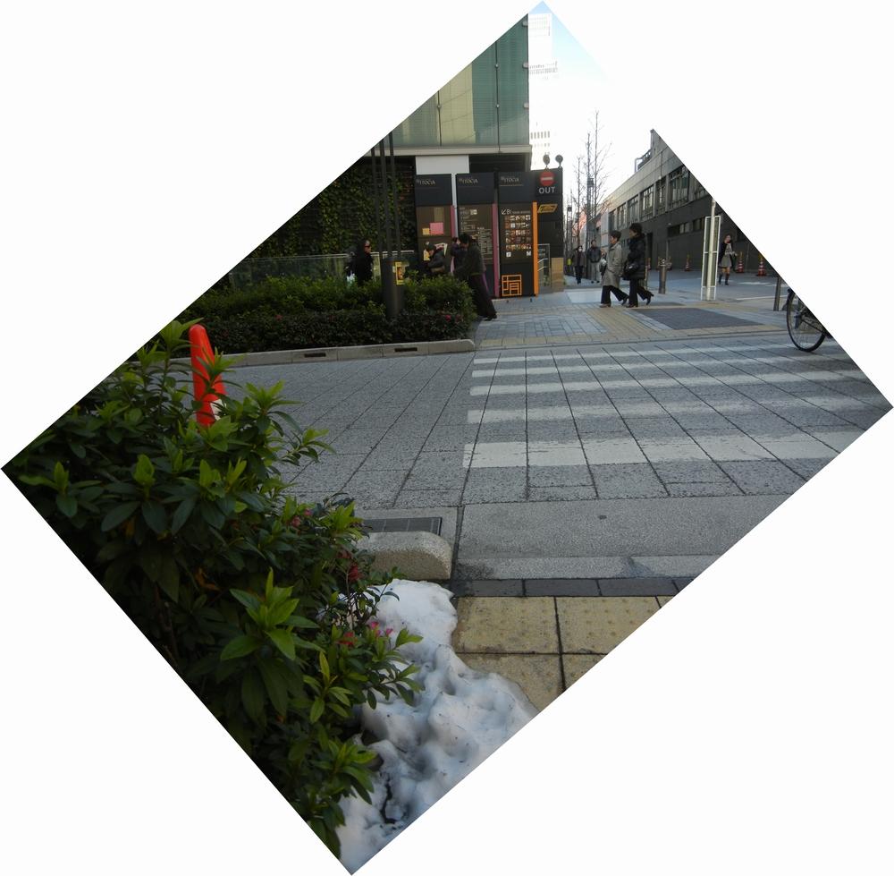 2月16日(水)今日は東京へ!_f0060461_21373629.jpg