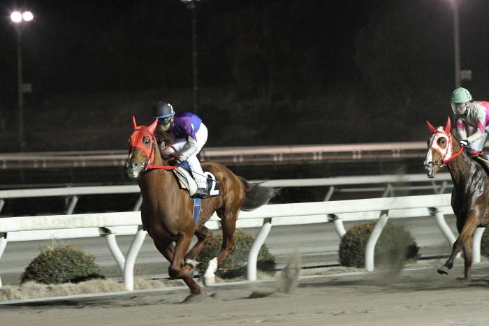 2011年2月5日(土) 高知競馬 6R チーム北海道協賛 がんばれ修次特別 C2ロ_a0077663_6545424.jpg