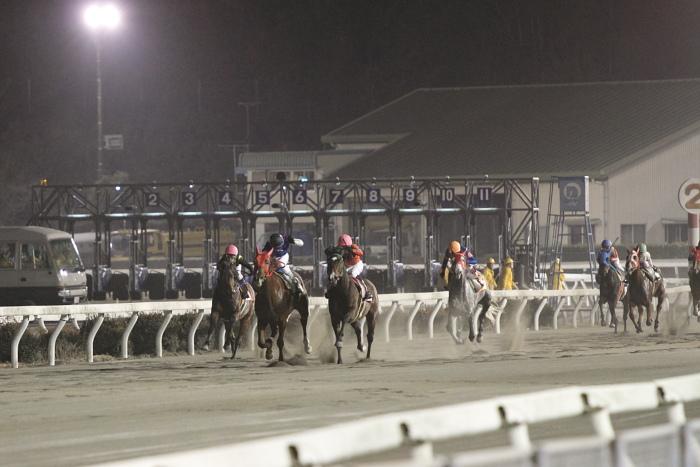 2011年2月5日(土) 高知競馬 6R チーム北海道協賛 がんばれ修次特別 C2ロ_a0077663_6553342.jpg