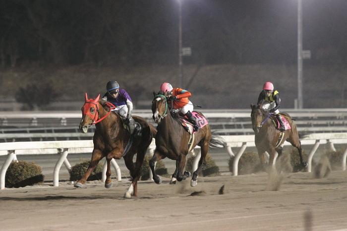 2011年2月5日(土) 高知競馬 6R チーム北海道協賛 がんばれ修次特別 C2ロ_a0077663_6554249.jpg