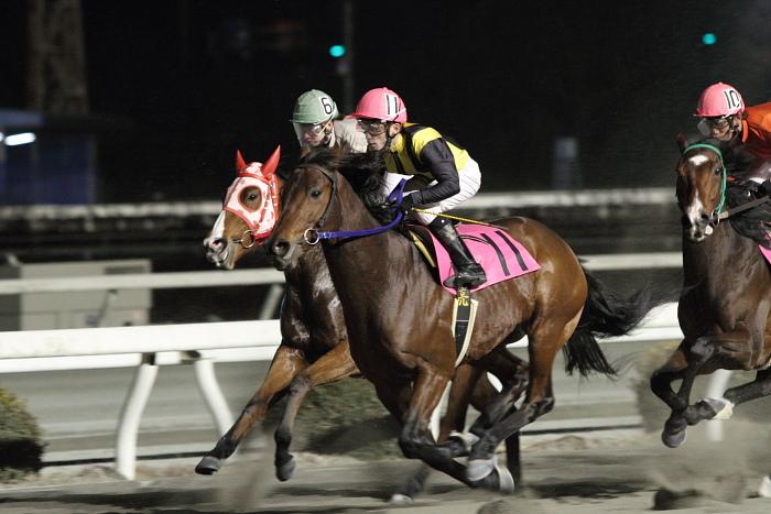 2011年2月5日(土) 高知競馬 6R チーム北海道協賛 がんばれ修次特別 C2ロ_a0077663_655491.jpg