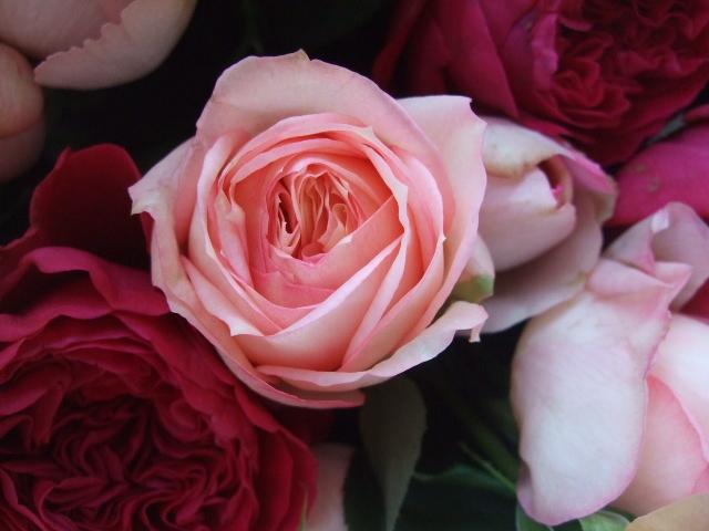 オークリーフ(35本の薔薇の花束)_f0049672_13463162.jpg