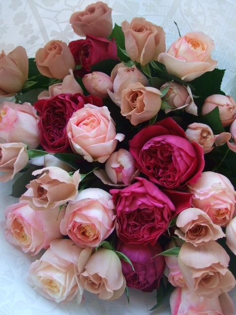 オークリーフ(35本の薔薇の花束)_f0049672_1359347.jpg