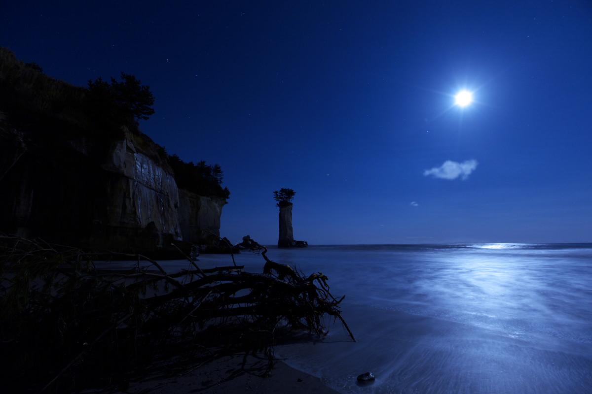 『この海岸、どこか変だ…』の翌日_b0191074_1452310.jpg