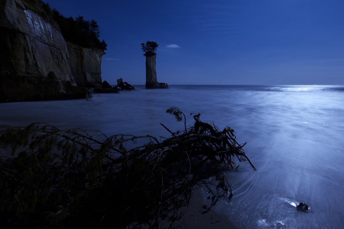 『この海岸、どこか変だ…』の翌日_b0191074_1463082.jpg