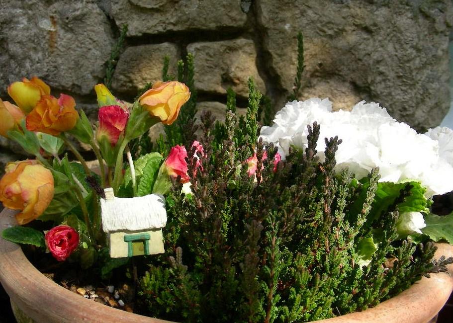 花壇のお手入れ・・・♪_b0096584_1002926.jpg