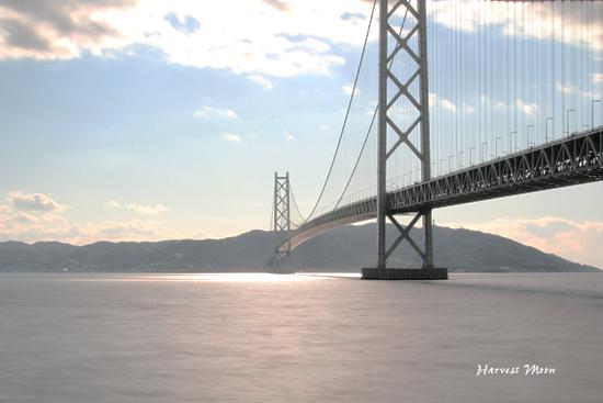 Bridge_b0208495_0204661.jpg