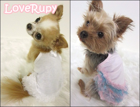 RUPY High Spring Collection 先行予約のご案内_b0084929_114639100.jpg