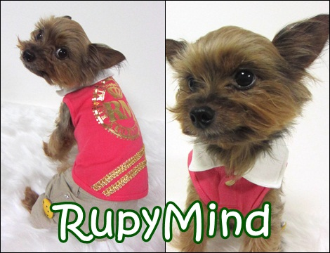RUPY High Spring Collection 先行予約のご案内~RupyMind_b0084929_16333997.jpg