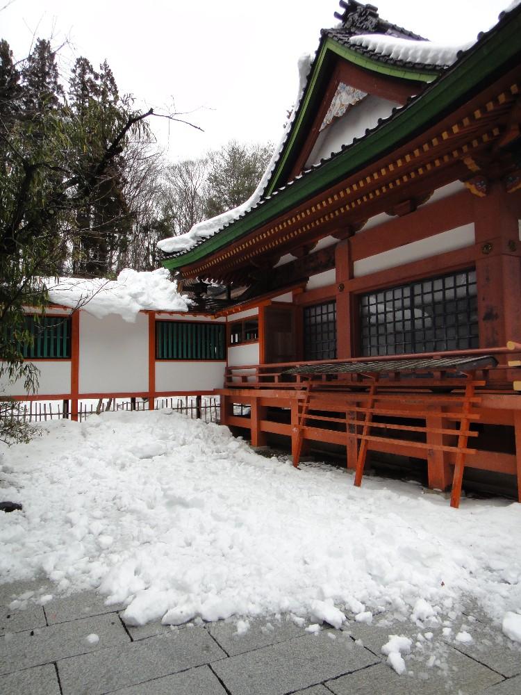 落雪_c0111229_17492552.jpg