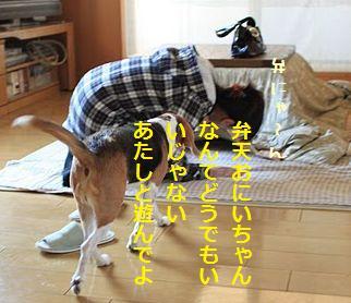 f0195543_2350577.jpg