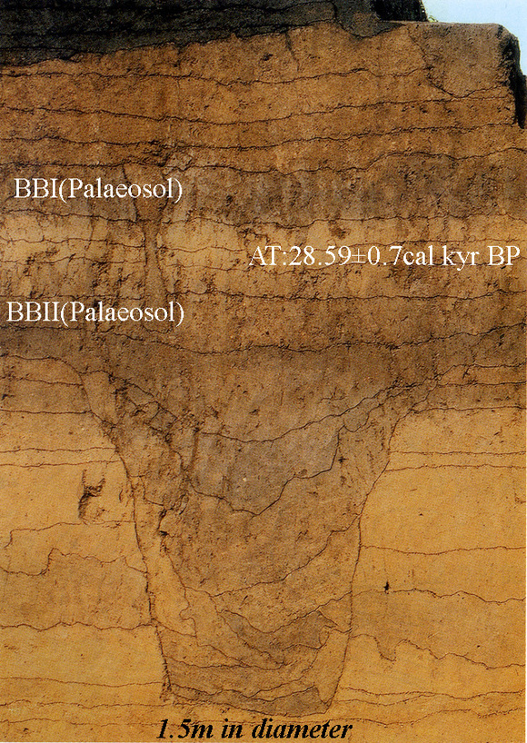 Early Upper Palaeolithic Pitfalls in the south foot of Mt.Fuji area_a0186568_22394517.jpg