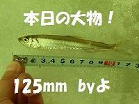 b0052375_1130454.jpg