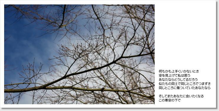 f0196386_15373154.jpg