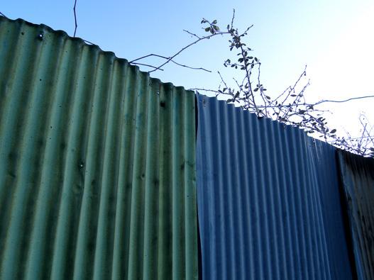 Corrugated Tinplate_e0209299_10252022.jpg