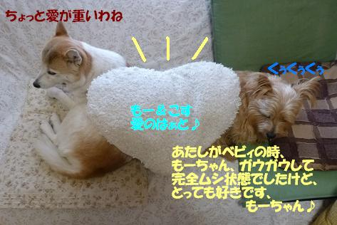 a0154801_1912324.jpg