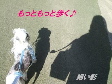 f0179203_16544836.jpg