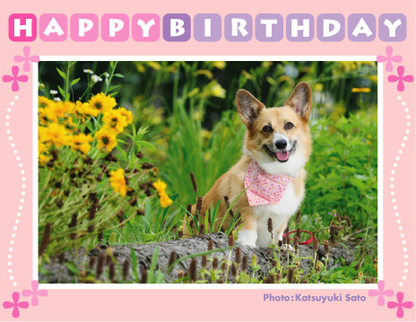 くるみちゃん、お誕生日おめでとう♪_d0102523_012720.jpg