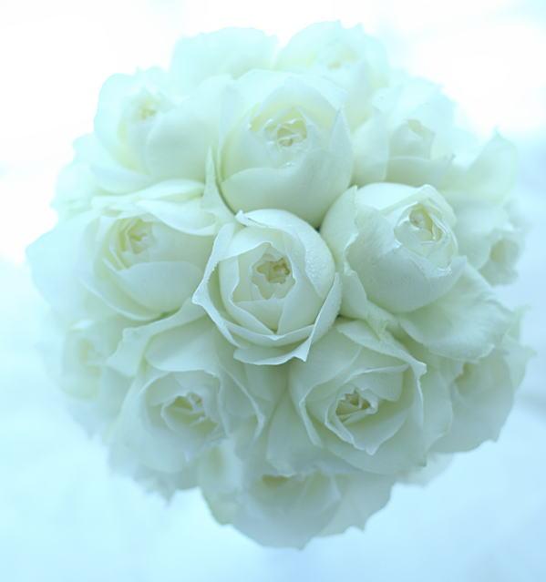 白のラウンドブーケ シャインホワイト ロアラブッシュ様へ_a0042928_2321272.jpg
