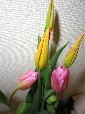 b0207536_2234031.jpg
