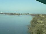 パンダ 利根川を越えて_b0096957_11452498.jpg