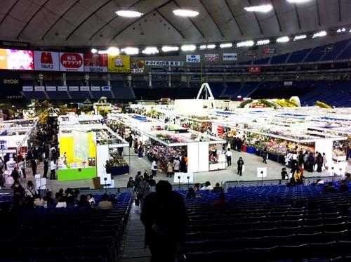 東京ドーム世界蘭展                  No.949_d0103457_22481157.jpg