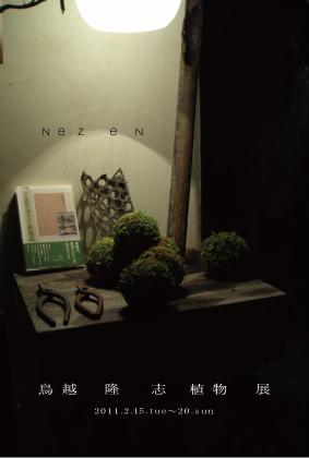 NeZ en -鳥越隆志 植物展-_b0052772_18365499.jpg