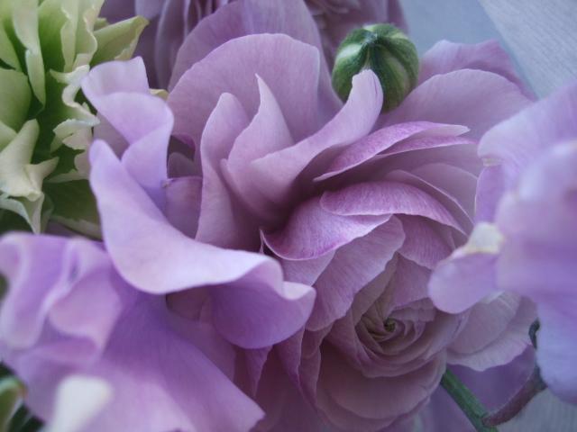 オークリーフ(春の花束)_f0049672_17332056.jpg