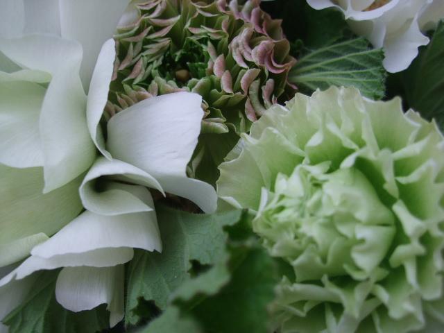オークリーフ(春の花束)_f0049672_1737159.jpg